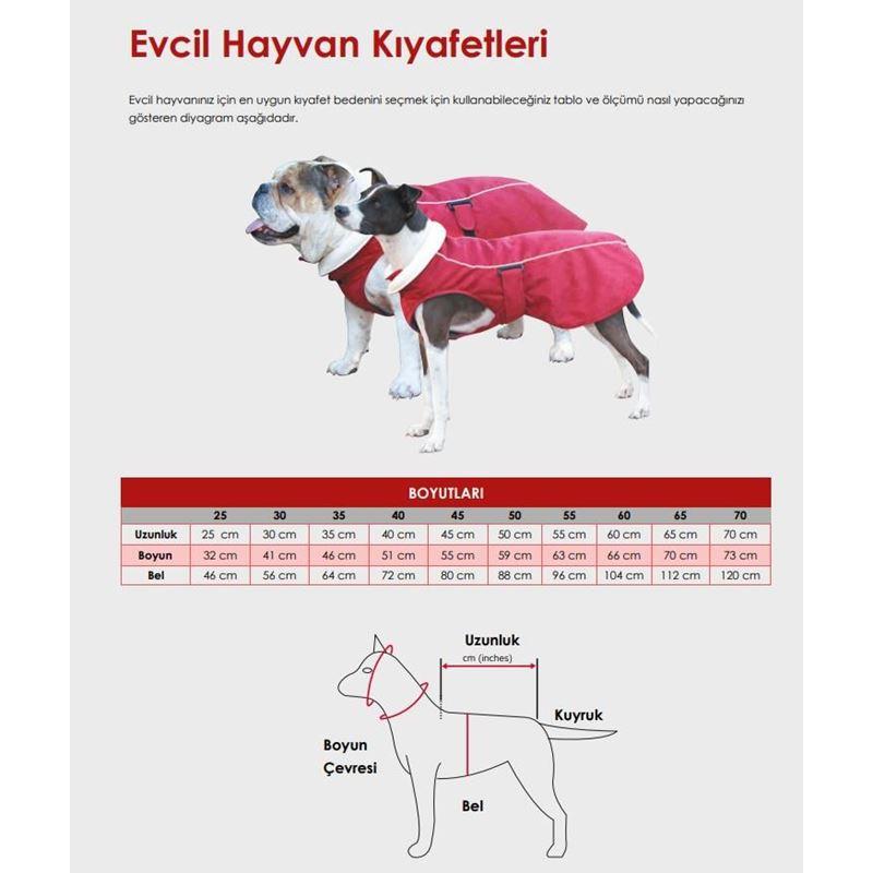 Reddingo Kırmızı Köpek Yağmurluğu 25 Cm