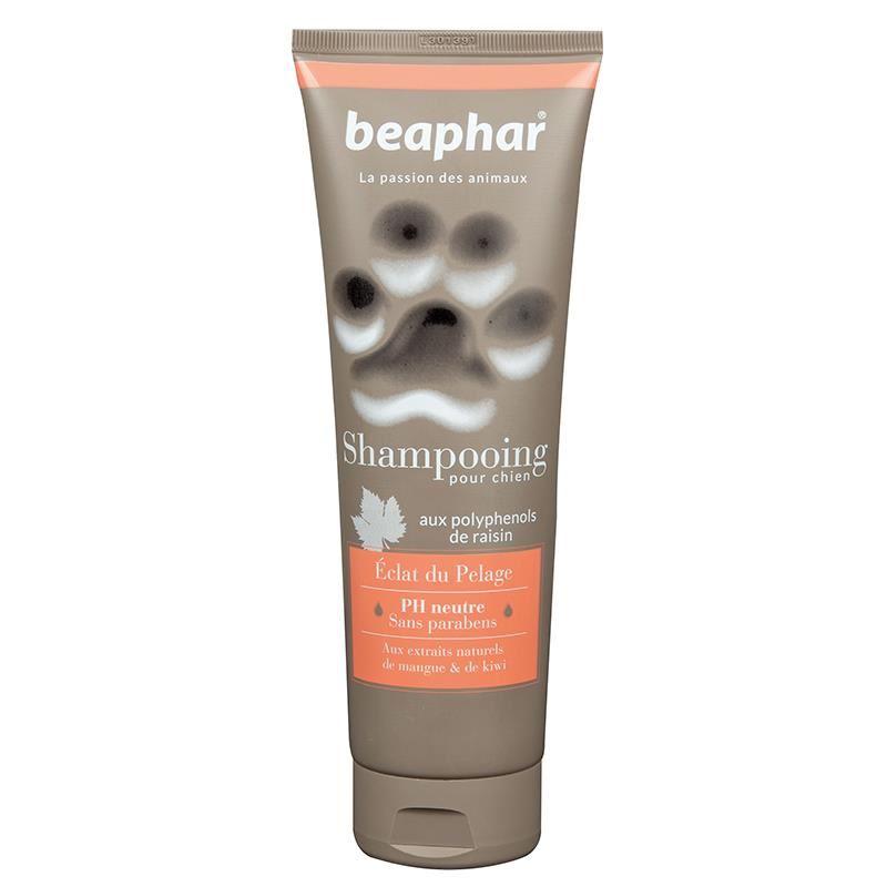 Beaphar Premium Besleyici Ve Parlaklık Verici Köpek Şampuanı 250 Ml