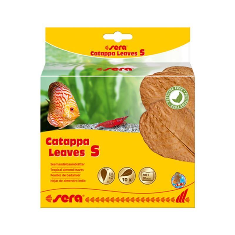 Sera Catappa Yaprağı S 14 Cm 10lu Paket