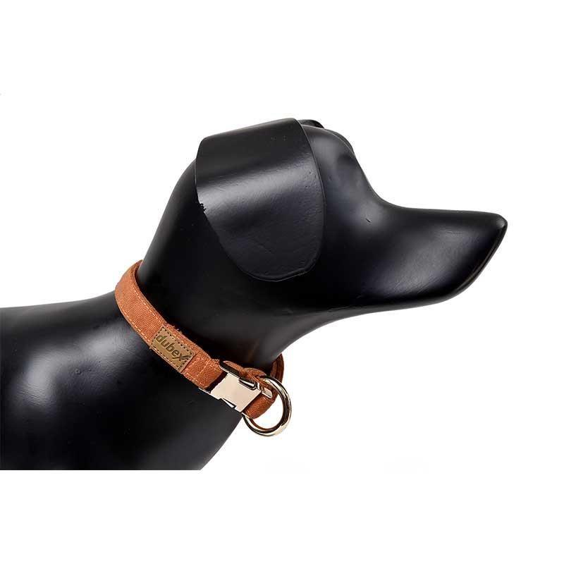 G-Dog Köpek Boyun Tasması Turuncu XS-S