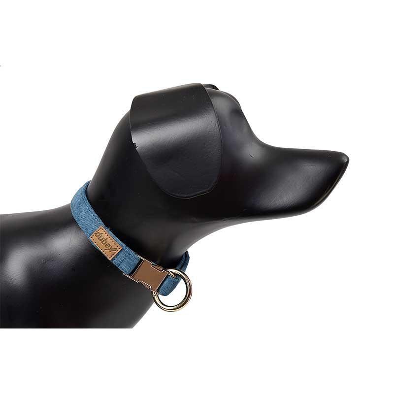 G-Dog Köpek Boyun Tasması Turkuaz L-XL
