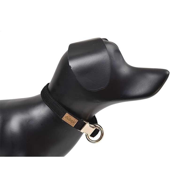G-Dog Köpek Boyun Tasması Siyah M-L
