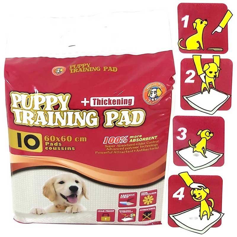 Hushpet Köpek Eğitim Çiş Pedi 60x60 10 Adet