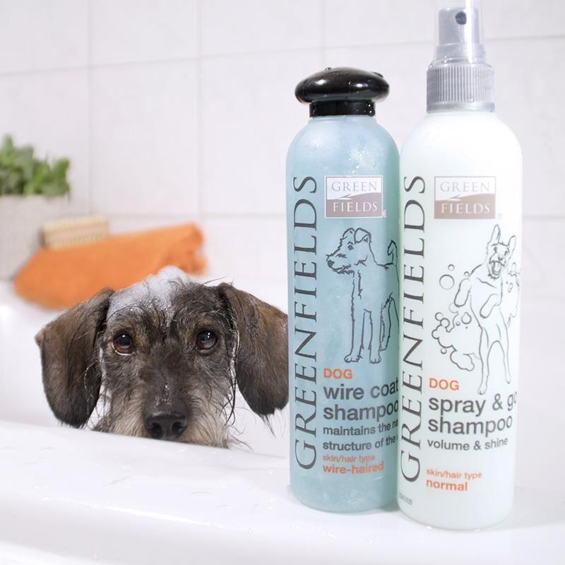 Green Fields Wire Coat Sert Tüylü Köpek Şampuanı 250 ml