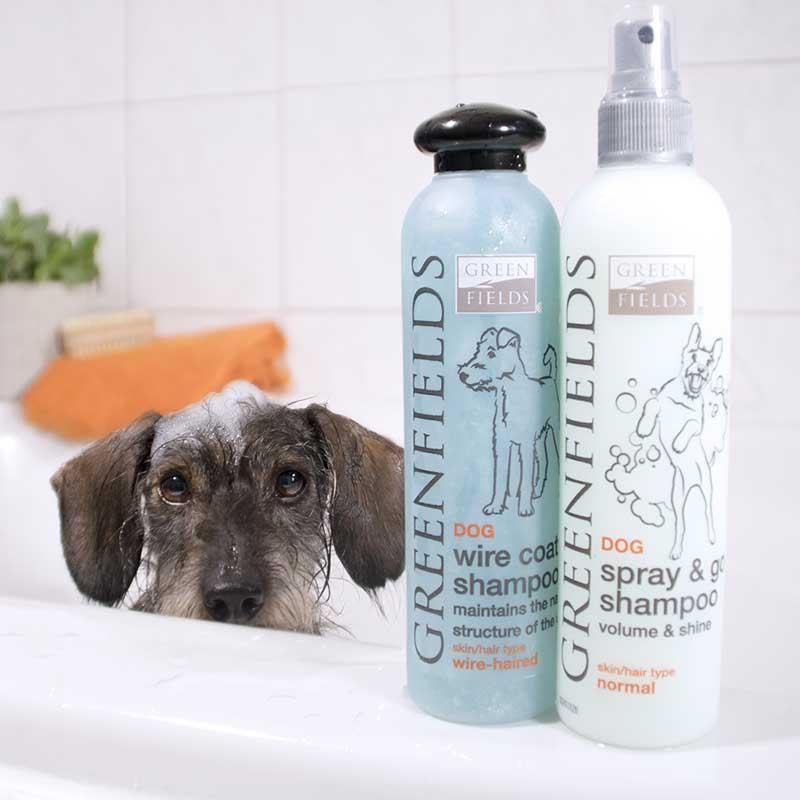 Green Fields Dogz On The Run Sprey Köpek Şampuanı 250 ml