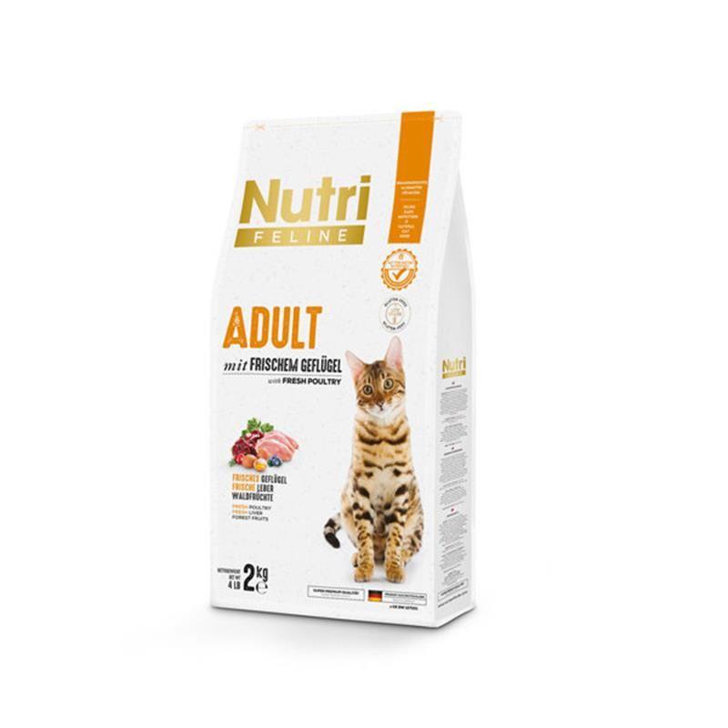 Nutri Feline Kümes Hayvanlı Düşük Tahıllı Yetişkin Kedi Maması 2 Kg
